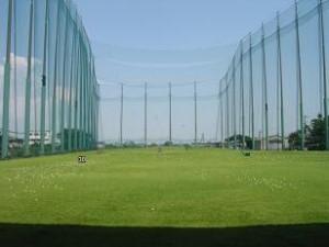 golfa0813